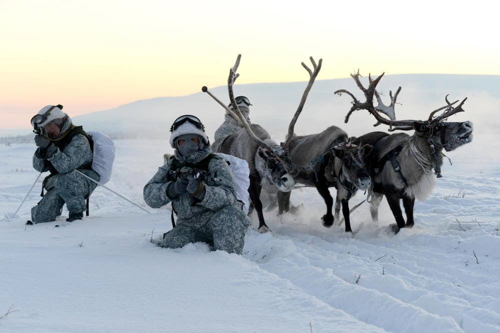 Russian-Special-Forces-with-reindeer-sleds