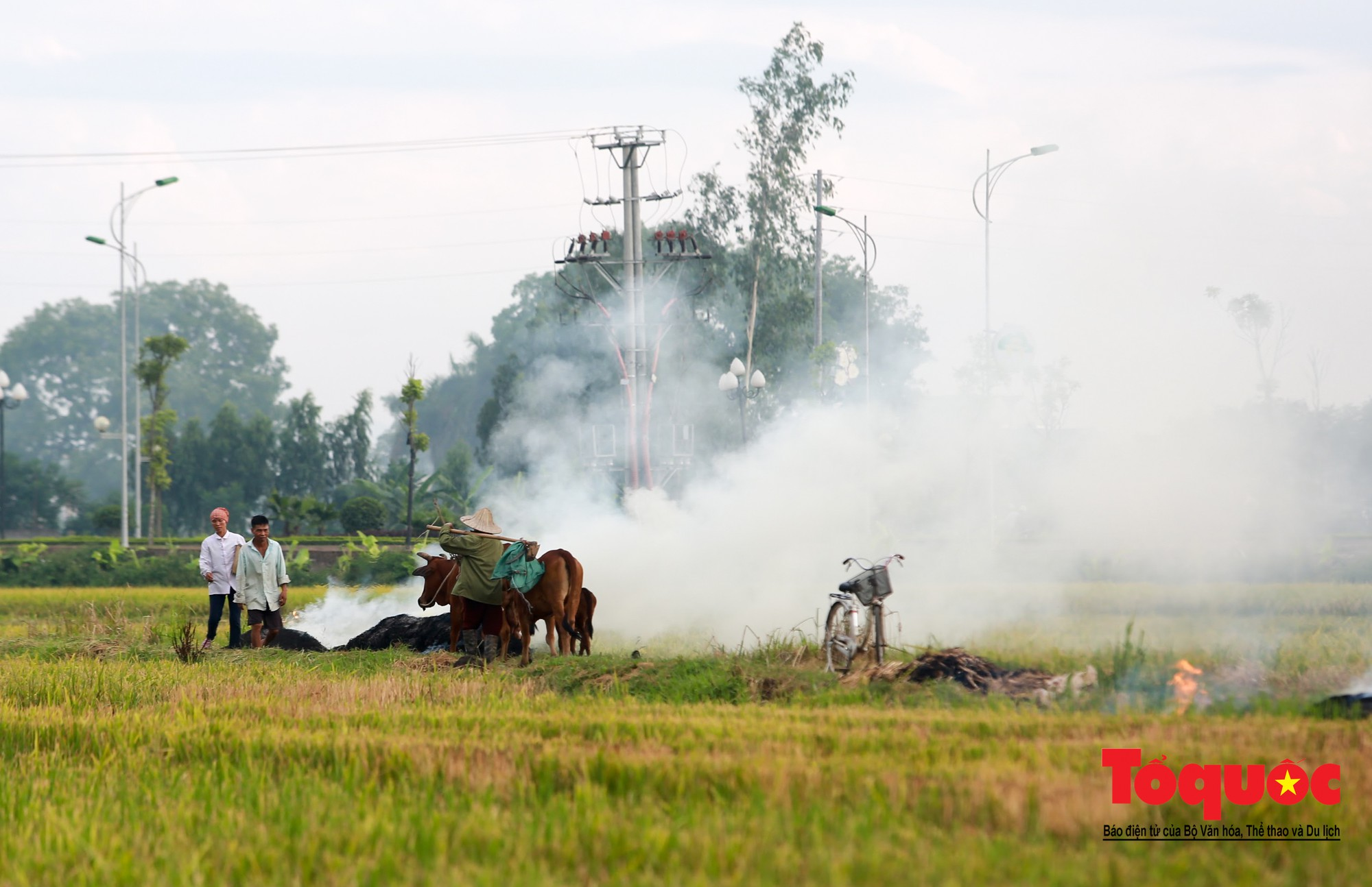 Nông dân ngoại thành vô tình khiến nội thành Hà Nội có một lớp sương mờ12