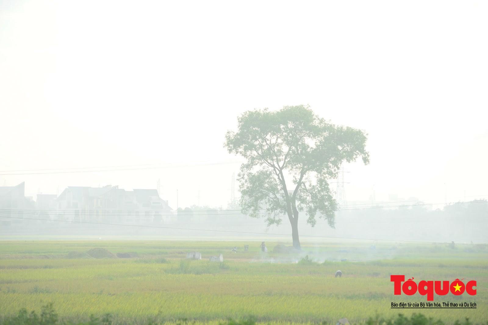 Nông dân ngoại thành vô tình khiến nội thành Hà Nội có một lớp sương mờ2