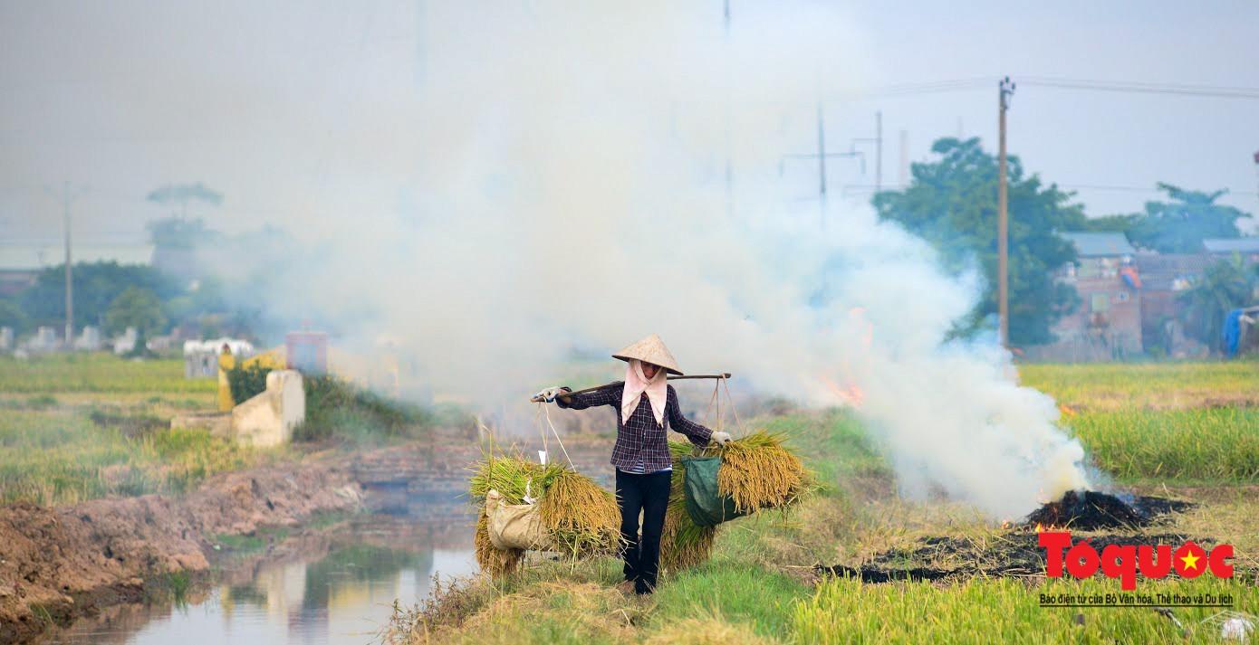 Nông dân ngoại thành vô tình khiến nội thành Hà Nội có một lớp sương mờ8