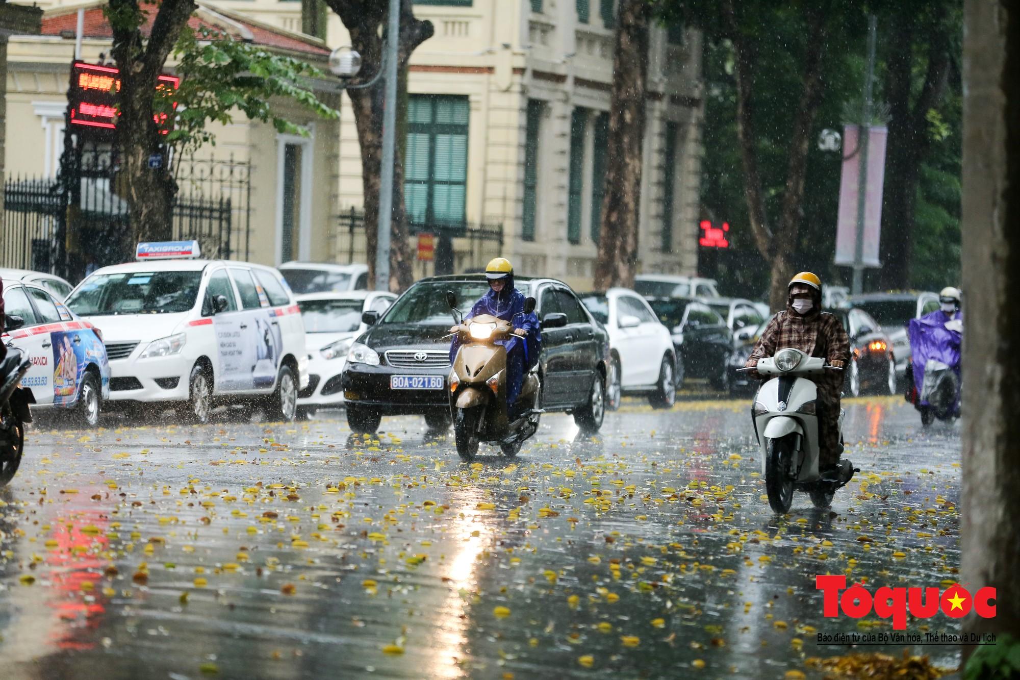 Cơn mưa lớn bất trợt khiến không khí ở thủ đô Hà Nội giảm bụi ô nhiễm nhanh chóng4