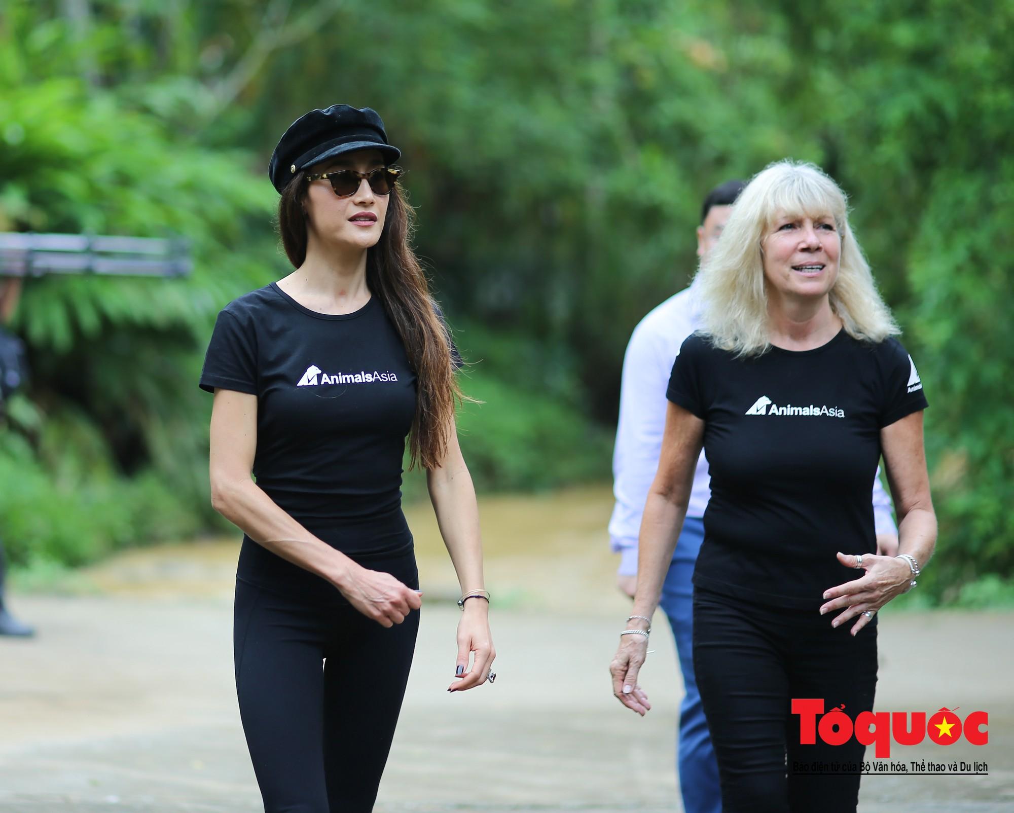 Ngôi sao Hollywood người Mỹ gốc Việt Maggie Q thăm Trung tâm Cứu hộ Gấu Việt Nam và đặt tên cho một chú gấu7
