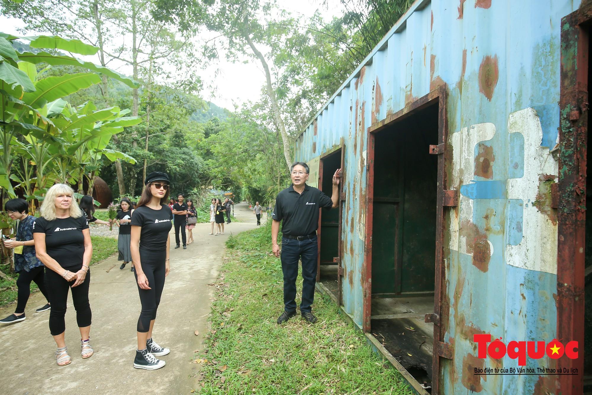 Ngôi sao Hollywood người Mỹ gốc Việt Maggie Q thăm Trung tâm Cứu hộ Gấu Việt Nam và đặt tên cho một chú gấu8