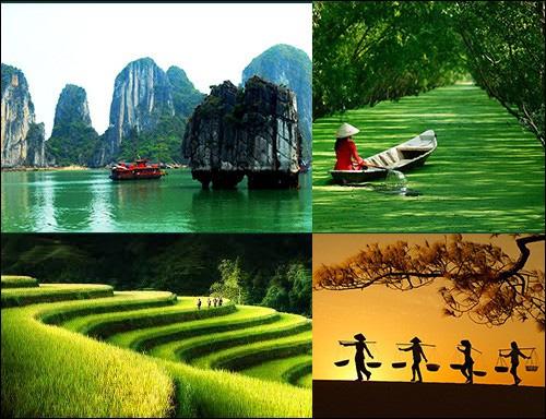 Tổ chức Cuộc thi và Triển lãm Ảnh nghệ thuật Việt Nam năm 2020 - Ảnh 1.