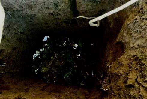 Người mẹ nhẫn tâm vứt đứa con mới chào đời xuống hố phân - Ảnh 1.