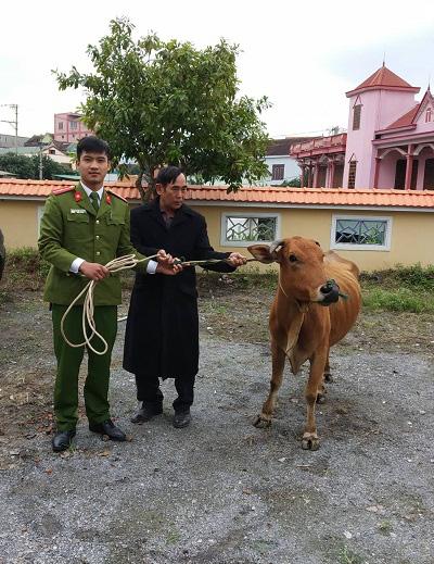 Quảng Bình: Bắt nhóm đối tượng trộm trâu, bò trên địa bàn - Ảnh 3.