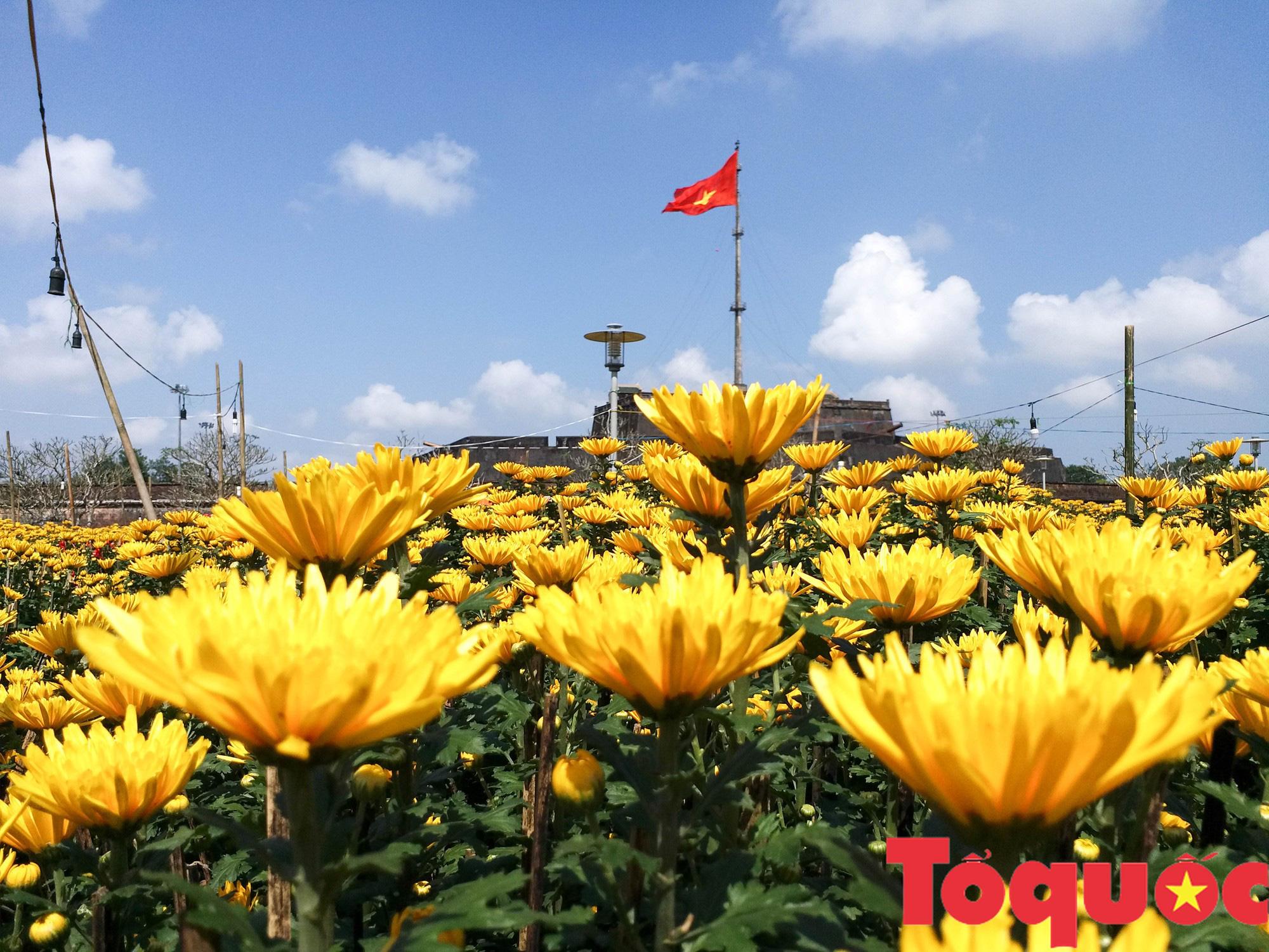 Người dân và du khách tại Huế rộn ràng xuống phố đón Xuân Kỷ Hợi - Ảnh 14.