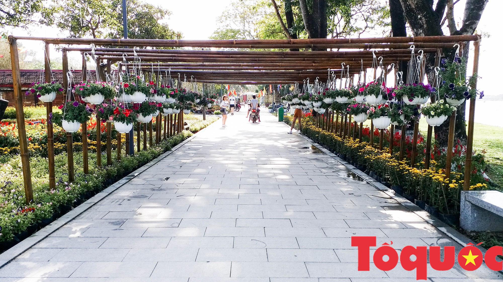 Người dân và du khách tại Huế rộn ràng xuống phố đón Xuân Kỷ Hợi - Ảnh 2.