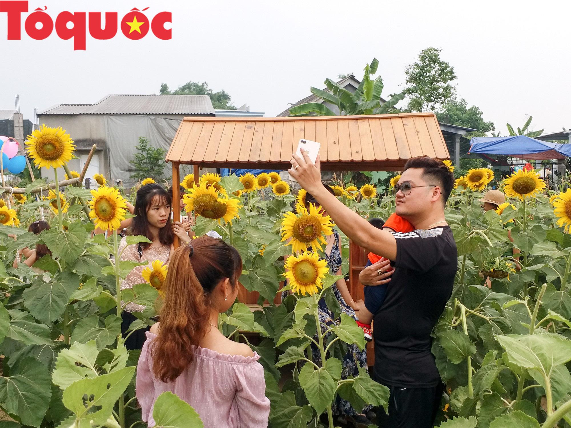 Hàng nghìn người đổ xô check in cánh đồng hoa hướng dương tại Huế - Ảnh 10.