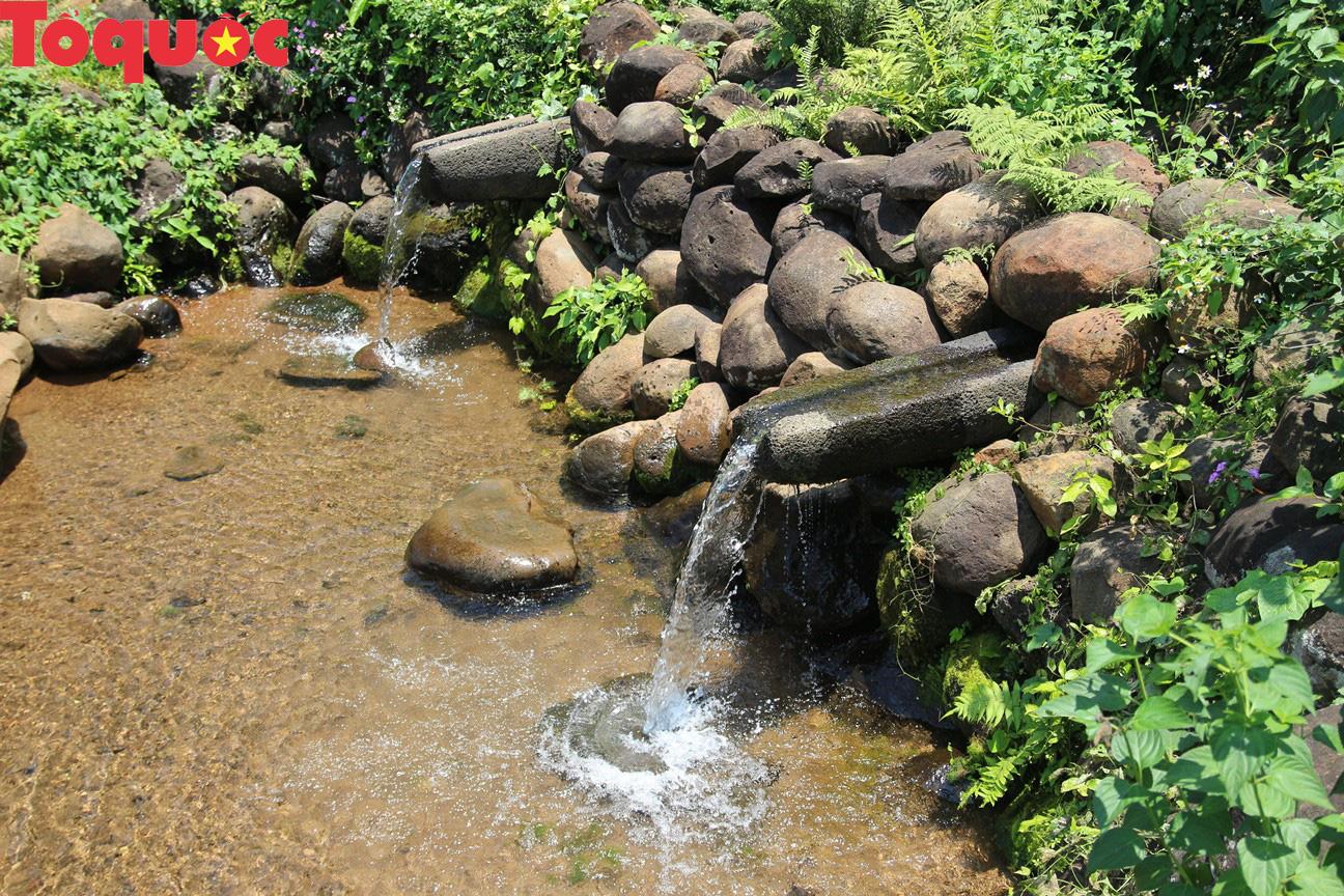Quảng Trị nghiên cứu hình thành tour thăm giếng cổ Gio An và vườn sâm Bố Chính - Ảnh 1.