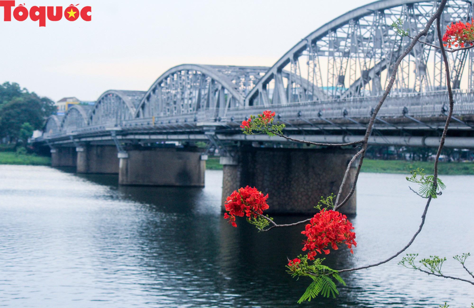Đất trời xứ Huế đẹp rực rỡ trong mùa phượng vĩ nở hoa - Ảnh 18.
