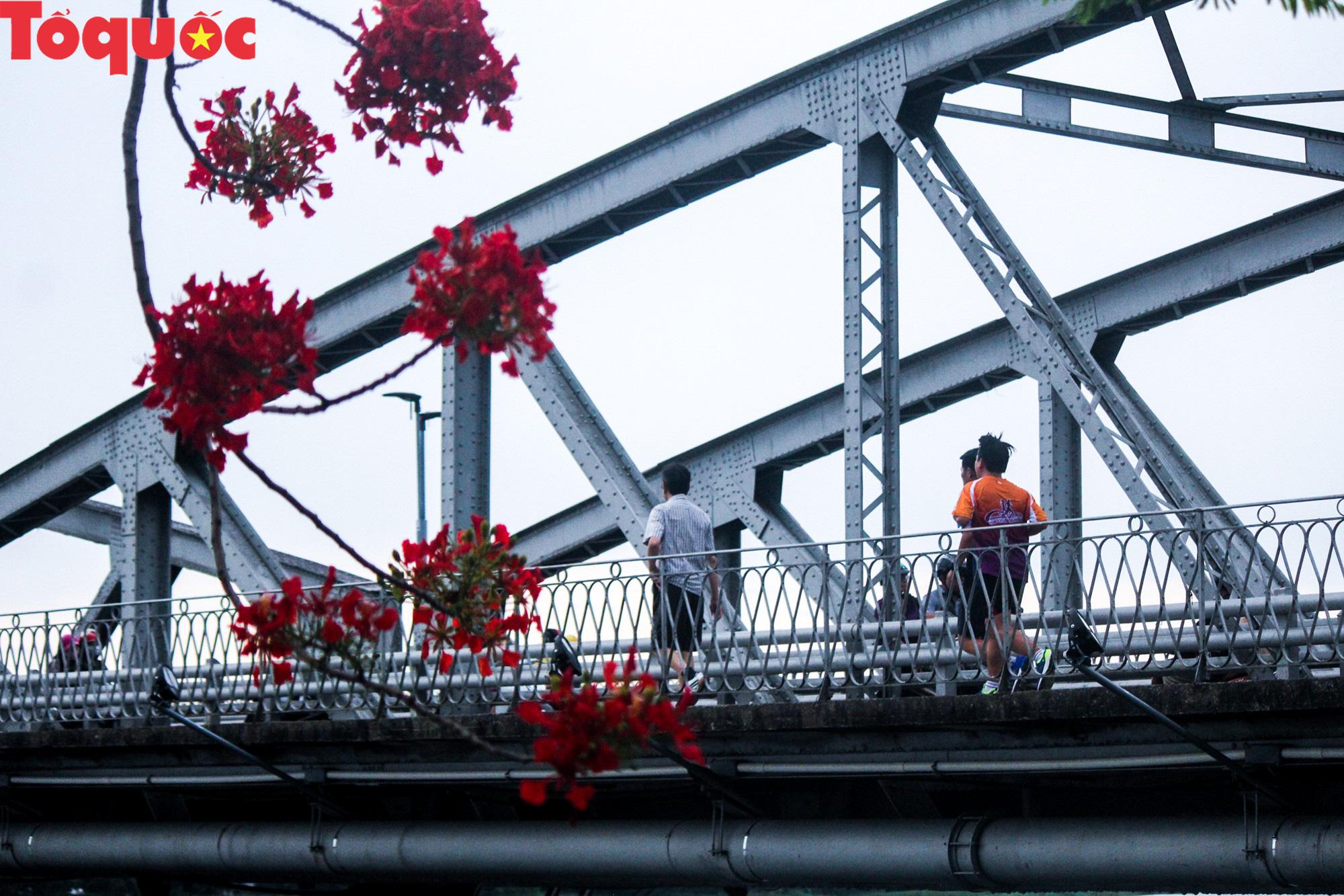 Đất trời xứ Huế đẹp rực rỡ trong mùa phượng vĩ nở hoa - Ảnh 20.