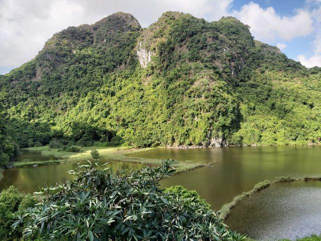 Làng Việt Hải: Chốn dừng chân thú vị trong hành trình khám phá di sản Hạ Long - Ảnh 8.