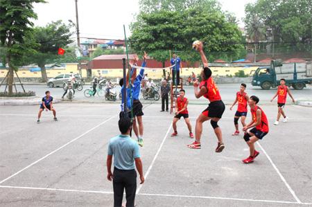 Thể thao Ninh Bình: Một năm nhiều dấu ấn - Ảnh 1.