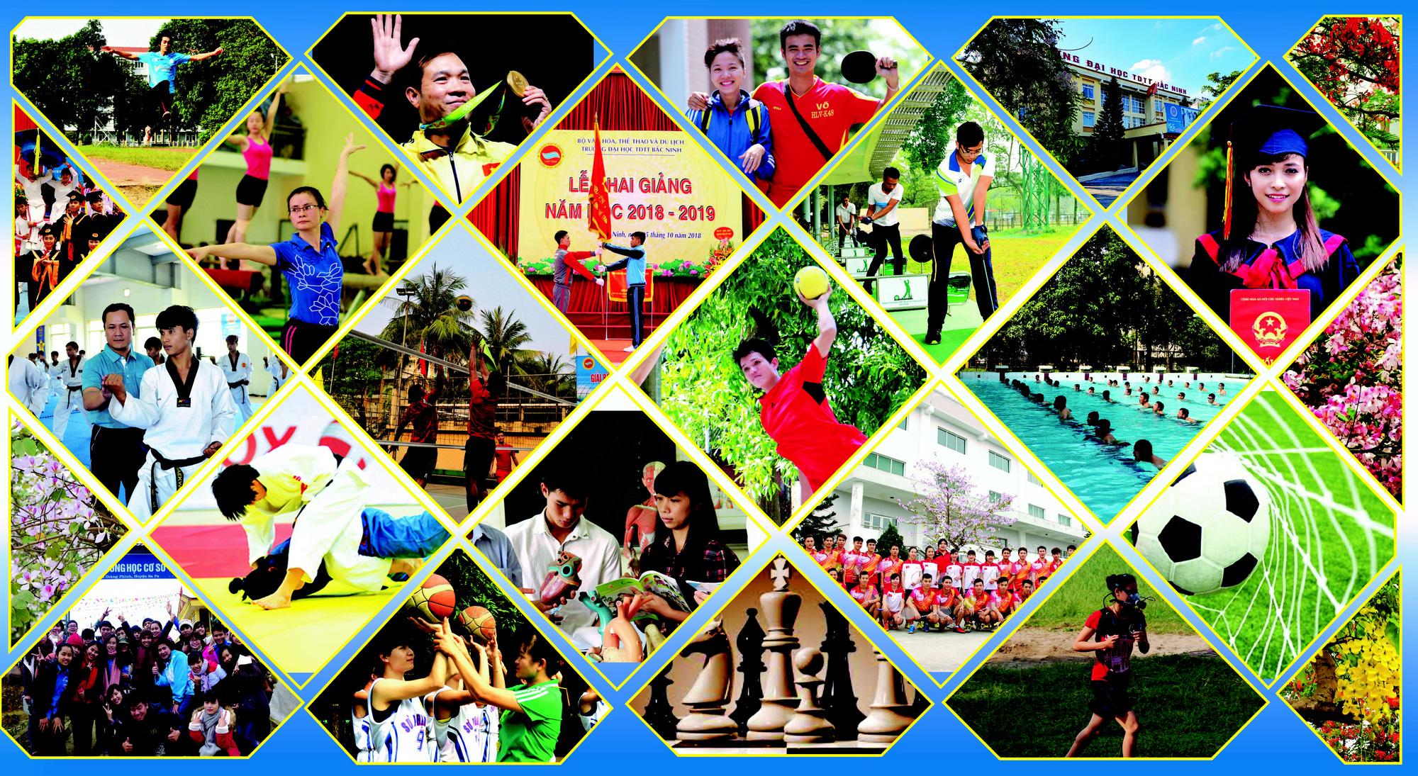 Trường Đại học Thể dục Thể thao Bắc Ninh bước lên tầm cao mới  - Ảnh 5.