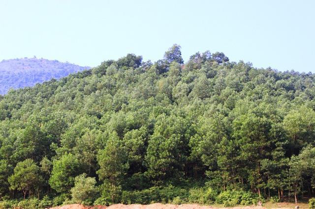 Bảo tồn, tôn tạo và phát huy giá trị di tích lịch sử - văn hóa địa điểm Hội thề Lũng Nhai - Ảnh 1.