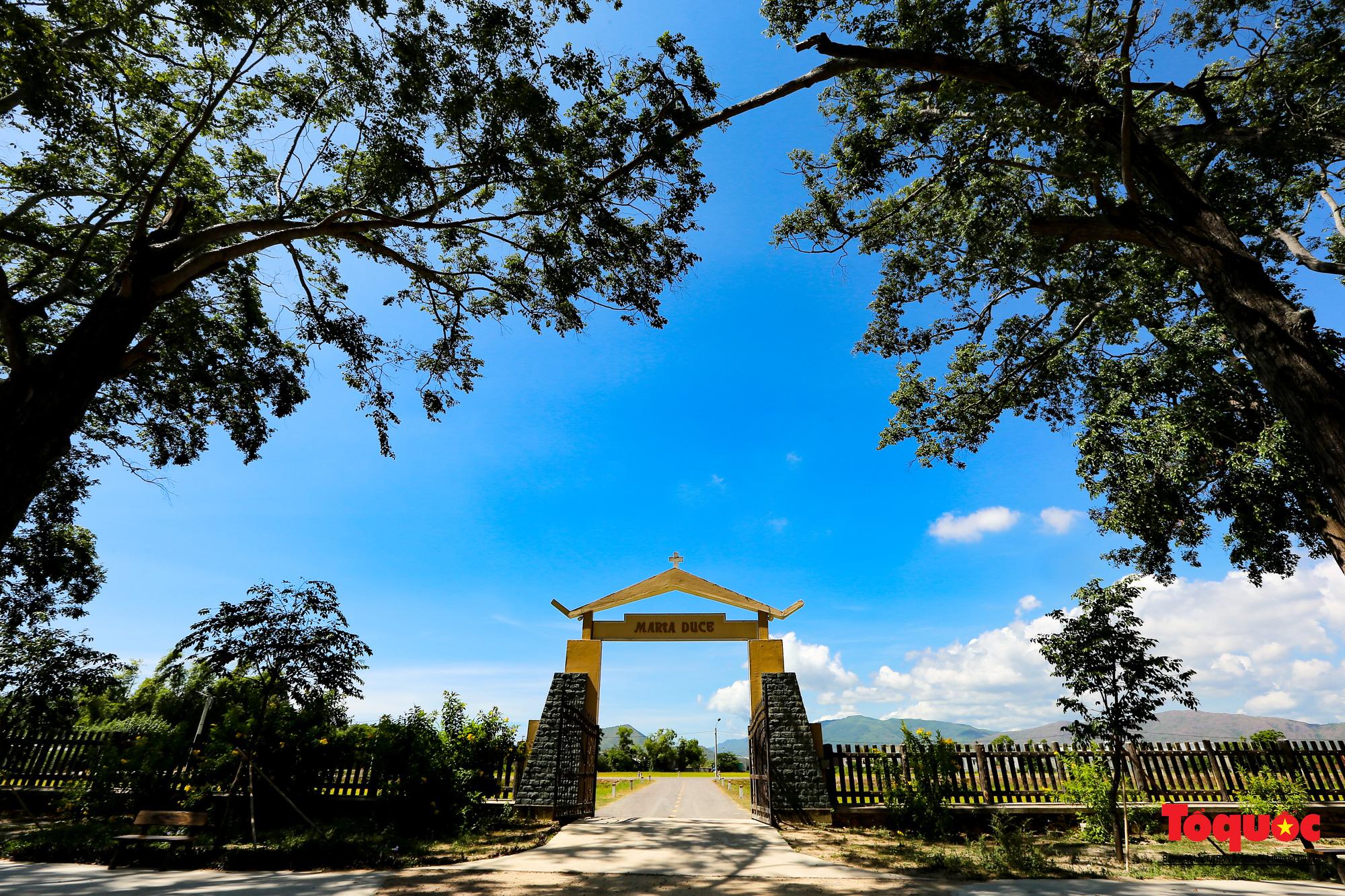 Tiểu Chủng Viện Làng Sông - kiến trúc Gothic tuyệt đẹp giữa đồng quê Việt Nam - Ảnh 12.