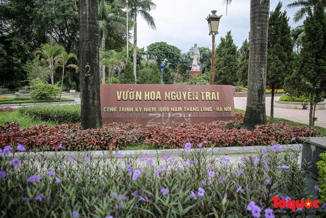 Hà Nội: Xuất hiện nhiều kim tiêm rơi vãi tại vườn hoa Nguyễn Trãi, Hà Đông  - Ảnh 1.