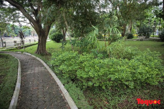 Hà Nội: Xuất hiện nhiều kim tiêm rơi vãi tại vườn hoa Nguyễn Trãi, Hà Đông  - Ảnh 4.