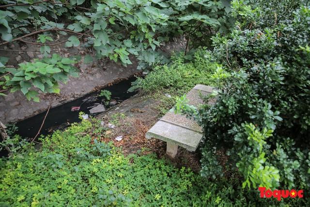 Hà Nội: Xuất hiện nhiều kim tiêm rơi vãi tại vườn hoa Nguyễn Trãi, Hà Đông  - Ảnh 11.