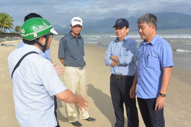 Cá chết dạt vào biển Đà Nẵng không liên quan tới ô nhiễm - Ảnh 2.