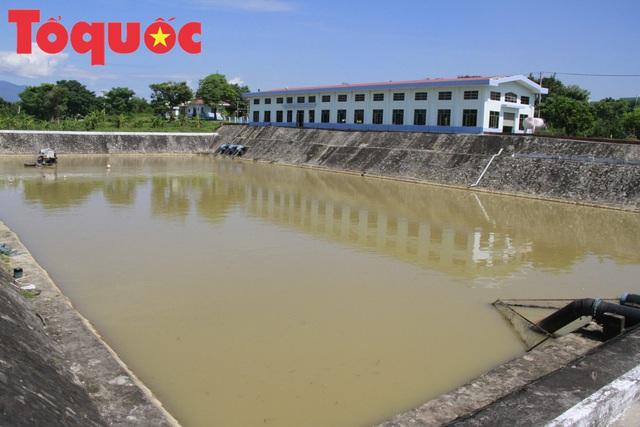 Đà Nẵng: Khẩn trương kiểm tra, rà soát, báo cáo cụ thể tình hình thiếu nước sạch trên địa bàn - Ảnh 1.