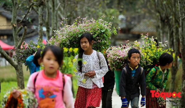 Hà Giang: Tam giác mạch bung nở rực rỡ sẵn sàng cho mùa Lễ hội hoa lớn nhất trong năm  - Ảnh 11.