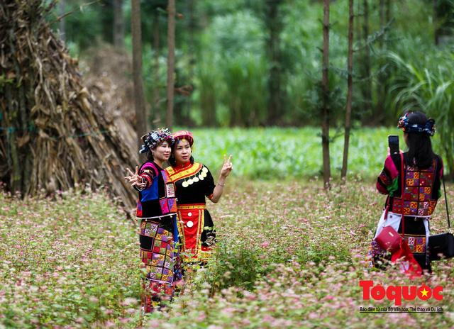 Hà Giang: Tam giác mạch bung nở rực rỡ sẵn sàng cho mùa Lễ hội hoa lớn nhất trong năm  - Ảnh 6.