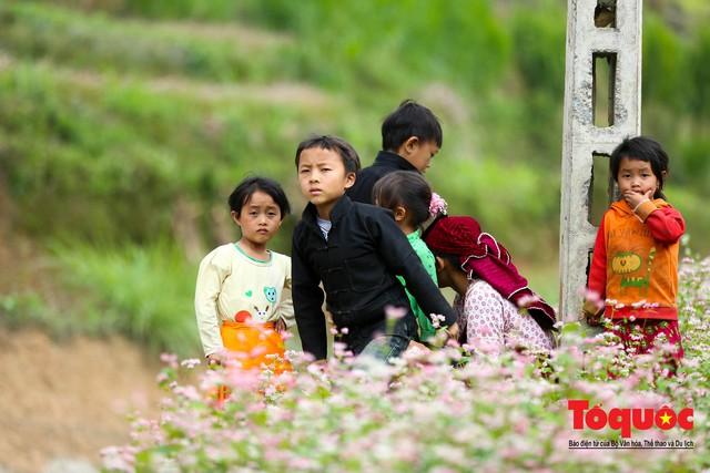 Hà Giang: Tam giác mạch bung nở rực rỡ sẵn sàng cho mùa Lễ hội hoa lớn nhất trong năm  - Ảnh 9.