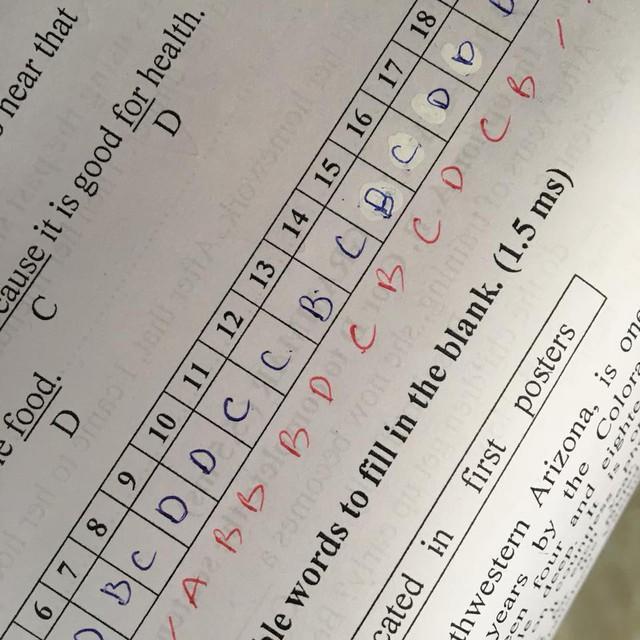 Thí sinh khóc thét với kết quả thi trắc nghiệm 20 câu chỉ đúng 1  - Ảnh 8.