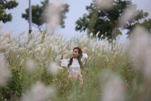 Đẹp nao lòng bên hoa lau trắng nở rợp trời Đà Nẵng - Ảnh 12.
