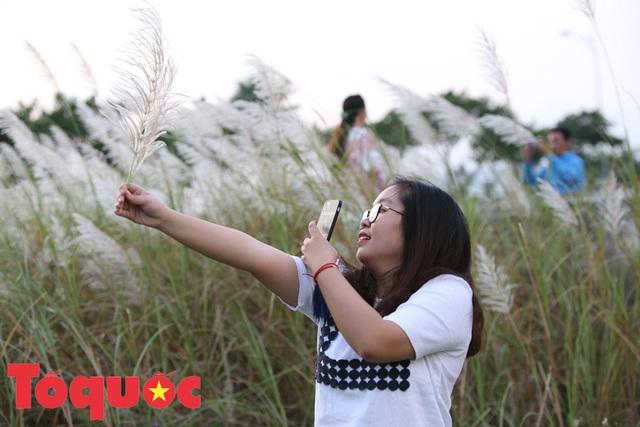 Đẹp nao lòng bên hoa lau trắng nở rợp trời Đà Nẵng - Ảnh 8.