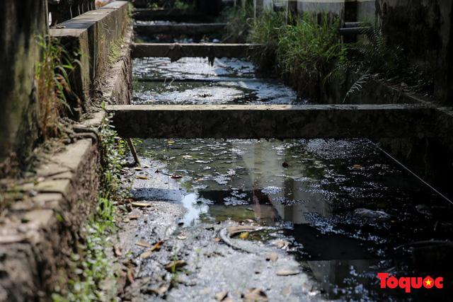 Hà Đông: Dân kêu than vì ô nhiễm rãnh nước thải nhiều năm vẫn chưa được xử lý - Ảnh 5.
