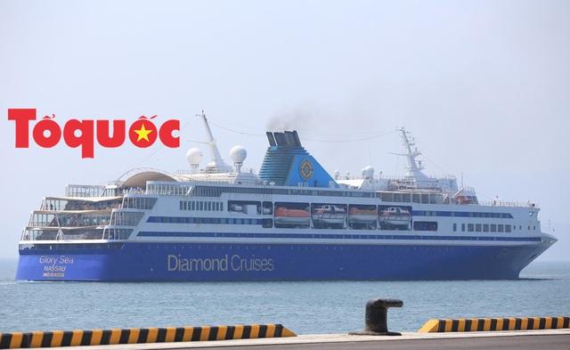 Quảng bá điểm đến Đà Nẵng tới các hãng tàu biển quốc tế  - Ảnh 1.