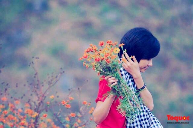 Hà Giang mùa hoa cúc dại nhuộm vàng Cao Nguyên Đá - Ảnh 8.