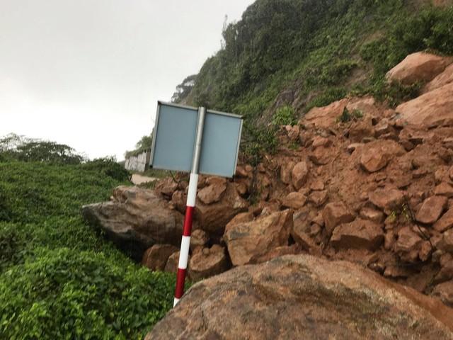 Khuyến cáo du khách hạn chế lên bán đảo Sơn Trà, Đà Nẵng thời điểm này - Ảnh 1.