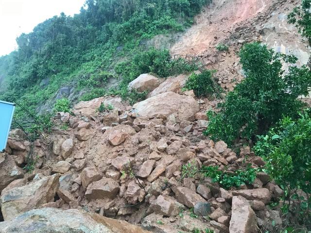 Khuyến cáo du khách hạn chế lên bán đảo Sơn Trà, Đà Nẵng thời điểm này - Ảnh 4.