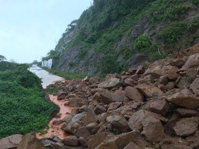 Khuyến cáo du khách hạn chế lên bán đảo Sơn Trà, Đà Nẵng thời điểm này - Ảnh 7.