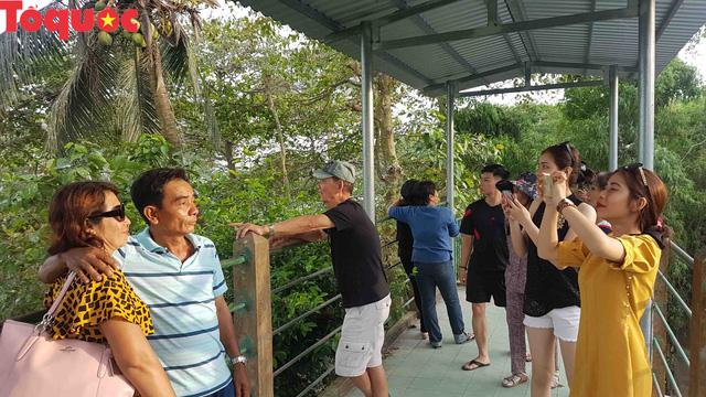 Hấp dẫn điểm đến vườn cò Bằng Lăng – Cần Thơ - Ảnh 18.