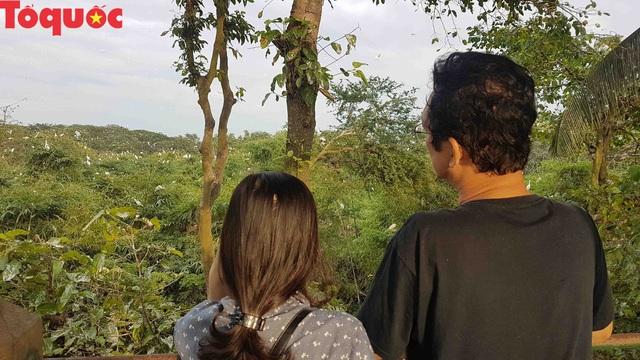 Hấp dẫn điểm đến vườn cò Bằng Lăng – Cần Thơ - Ảnh 9.