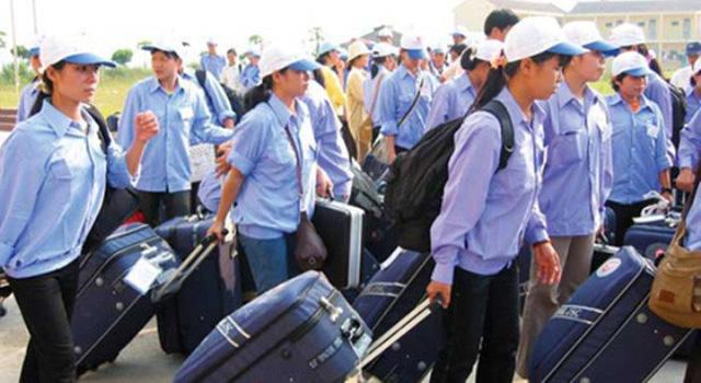 Xuất khẩu lao động Việt Nam 2019: những cánh cửa rộng mở - Ảnh 1.