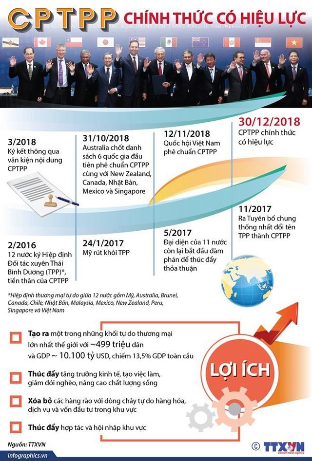 CPTPP: Động lực để Việt Nam cải cách thể chế kinh tế - Ảnh 2.