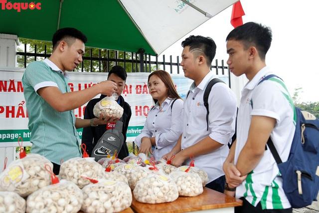 Một trường đại học ở Đà Nẵng mở điểm tiêu thụ hành, tỏi cho bà con nông dân Lý Sơn  - Ảnh 2.