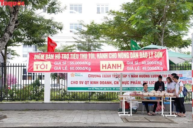 Một trường đại học ở Đà Nẵng mở điểm tiêu thụ hành, tỏi cho bà con nông dân Lý Sơn  - Ảnh 1.