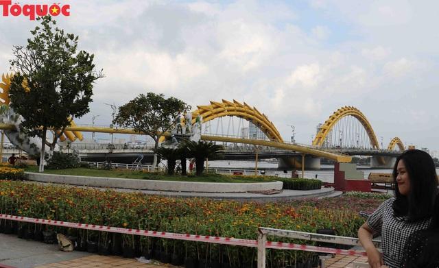 Du khách ngỡ ngàng khi cầu Vàng xuất hiện cạnh cầu Rồng bên bờ sông Hàn - Đà Nẵng - Ảnh 14.
