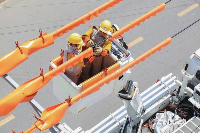 Điện lực miền Trung đảm bảo cung cấp điện phục vụ Tết Nguyên đán Kỷ Hợi - Ảnh 1.