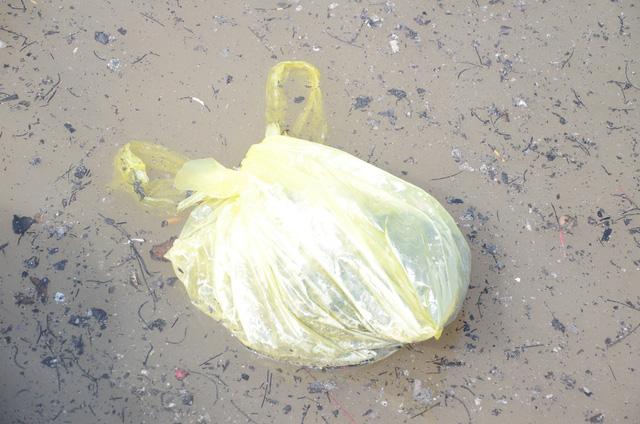 Hà Nội: Người dân đổ xô thả cá chép tiễn ông Táo về trời, rác tràn trên bến sông   - Ảnh 12.