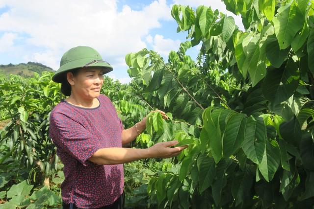 Năm 2019, ngành nông nghiệp Việt Nam phấn đấu xuất khẩu tối thiểu 43 tỷ USD - Ảnh 2.