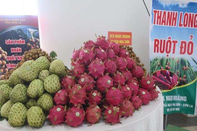 Năm 2019, ngành nông nghiệp Việt Nam phấn đấu xuất khẩu tối thiểu 43 tỷ USD - Ảnh 1.