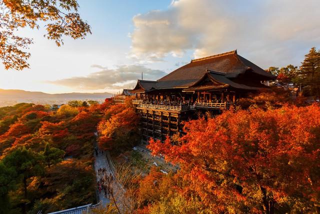 Muốn tới Nhật Bản: Du khách cập nhật ngay thuế tạm biệt - Ảnh 1.